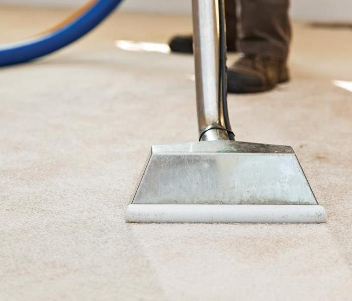 Cleaning carpets with a hot water extractor.