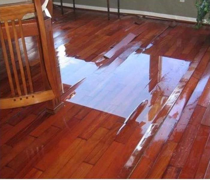 Water Damage Your house is damaged by water…….What do you do?