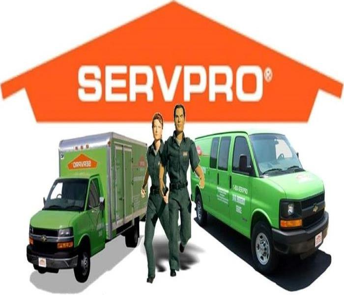 Servpro Logo with characters